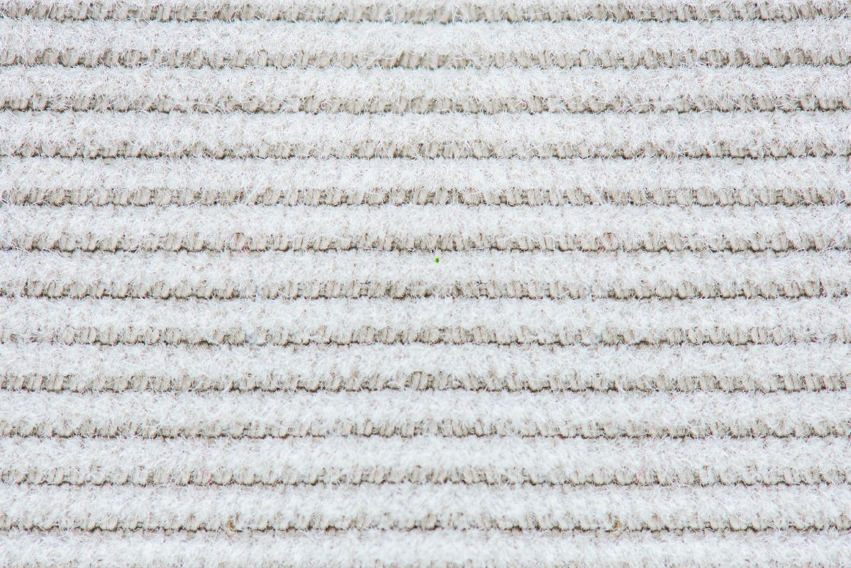 Textilfasern Baumwolle closeup